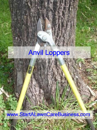 anvil loppers for cutting hardwood