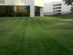Bidding Lawn Mowing Contracts for 2012